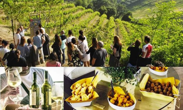 THE GRAND WINE TOUR, ENOTURISMO D'ECCELLENZA